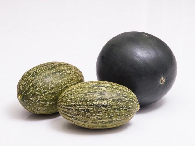 1-sandia-y-2-melones-1024x768