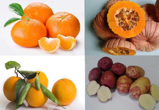 foto mandarina, naranja, patata y calabaza para la tienda